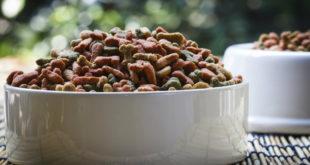 Chyby při skladování psích granulí