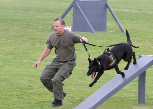 Z deníku psovoda bezpečnostní služby