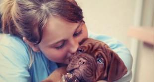Brzký kontakt se psy dokáže snížit rizika astmatu