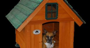 Hotel pro psa