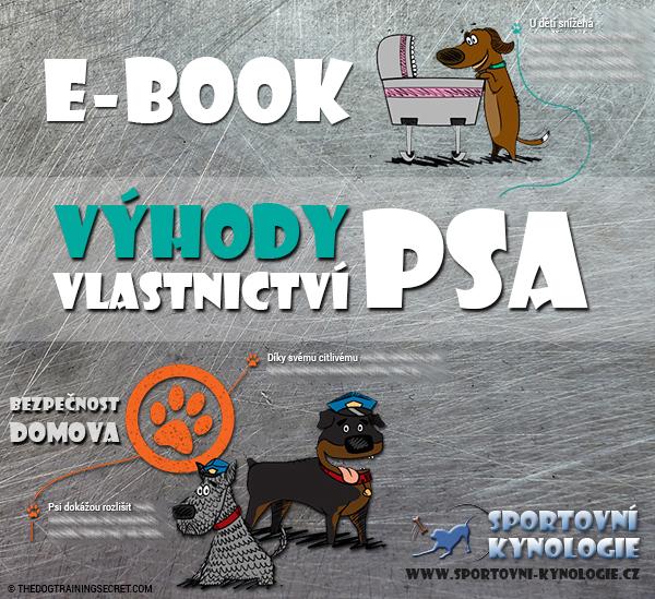 VYHODY-VLASTNICTVI-PSA_PDFm