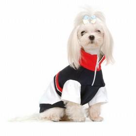 Oblečení pro psy