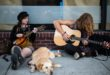 Hudba pro zvířata: Psí milují Boba Marleyho
