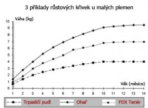 Příklad grafu růstu u malých plemen