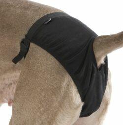 kalhotky pro psa