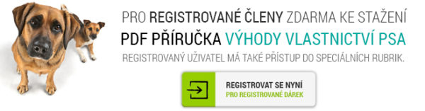uvod-registrace-web